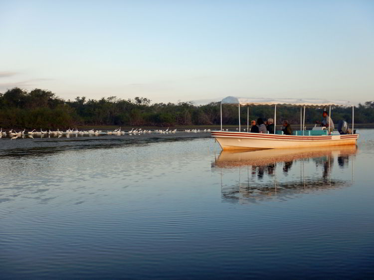 An image of a boat of a lagoon in the Coorked Tree Wildlife Sanctuary in Belize