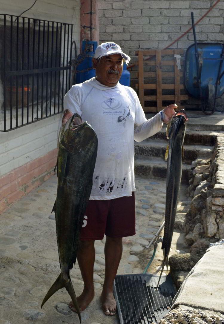 An image of a fisherman holding a freshly caught mahi mahi in Yelapa - Jalisco, Mexico - Yelapa Beach