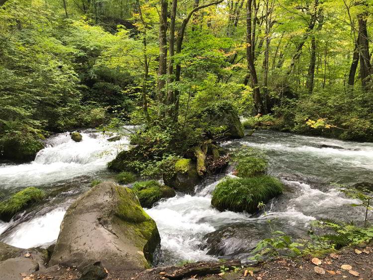 An image of Oirase Stream near Aomori, Japan - Lake Towada and Oirase Stream