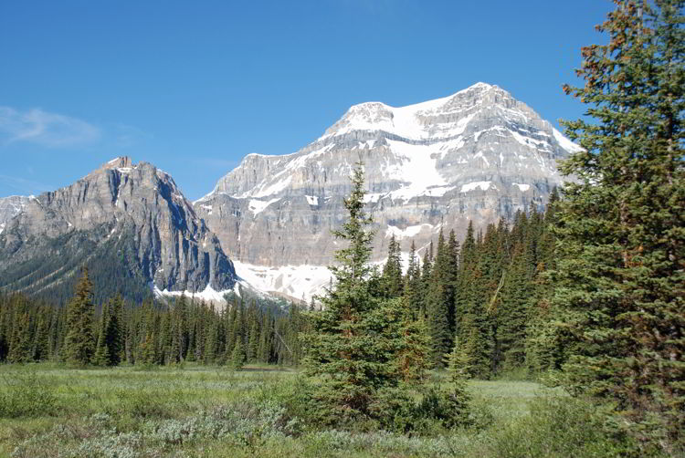 An image of a meadow and Mount Ball near Shadow Lake Lodge in Banff National Park