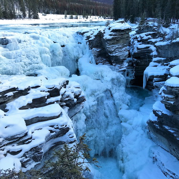 An image of the Athabasca Falls in Jasper National Park in Alberta, Canada - Alberta hikes help you beat the winter blues