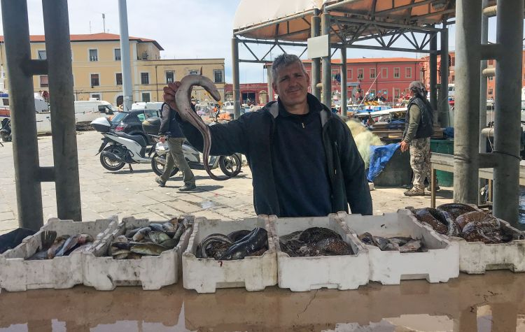 An image of a fiherman holding a fish in Livorno, Italy - exploring Livorno cruise port.