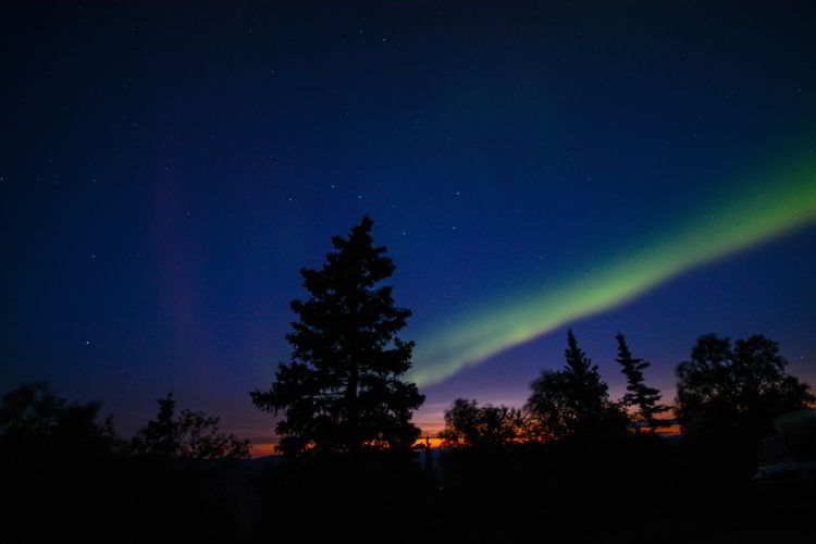 An image of the northern lights near Dawson City, Yukon in August.