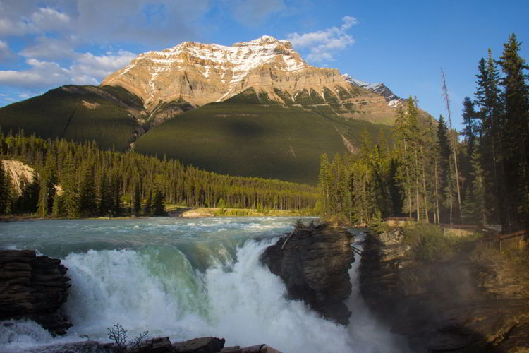 An image of Athabasca Falls in Jasper National Park, Alberta - Jasper Hikes.