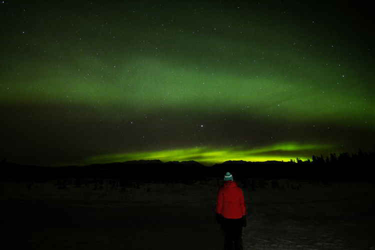 An image of a person in a red jacket watching the northern lights in the Yukon.