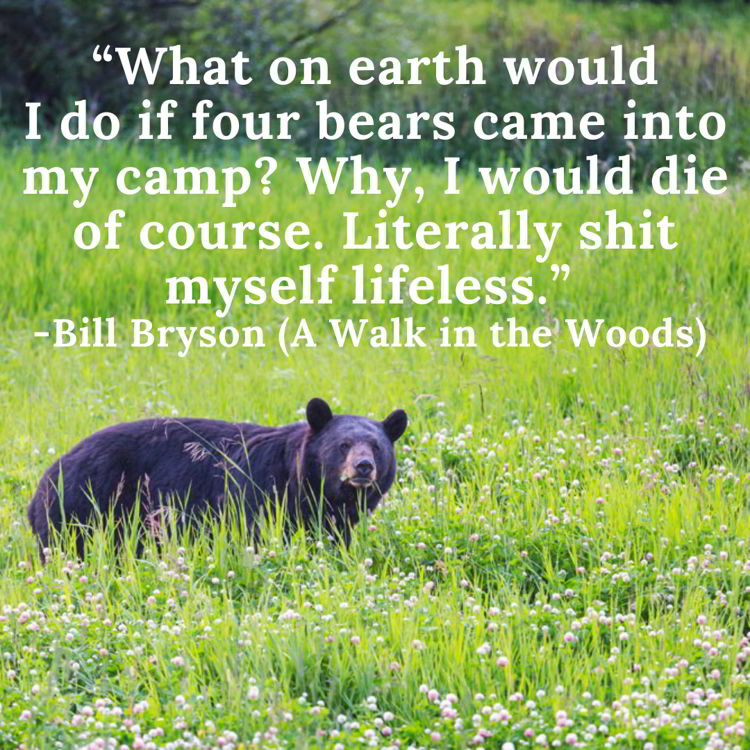 An image with a funny travel quote by Bill Bryson.