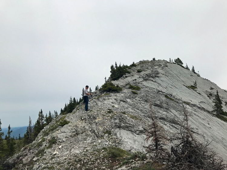 An image of the ridge walk to Grant MacEwan Peak on the Heart Mountain Horseshoe loop trail near Canmore, Alberta.