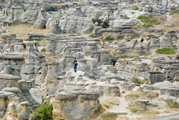 An image of the badlands landscape of Writing-on-Stone Provincial Park in Alberta.