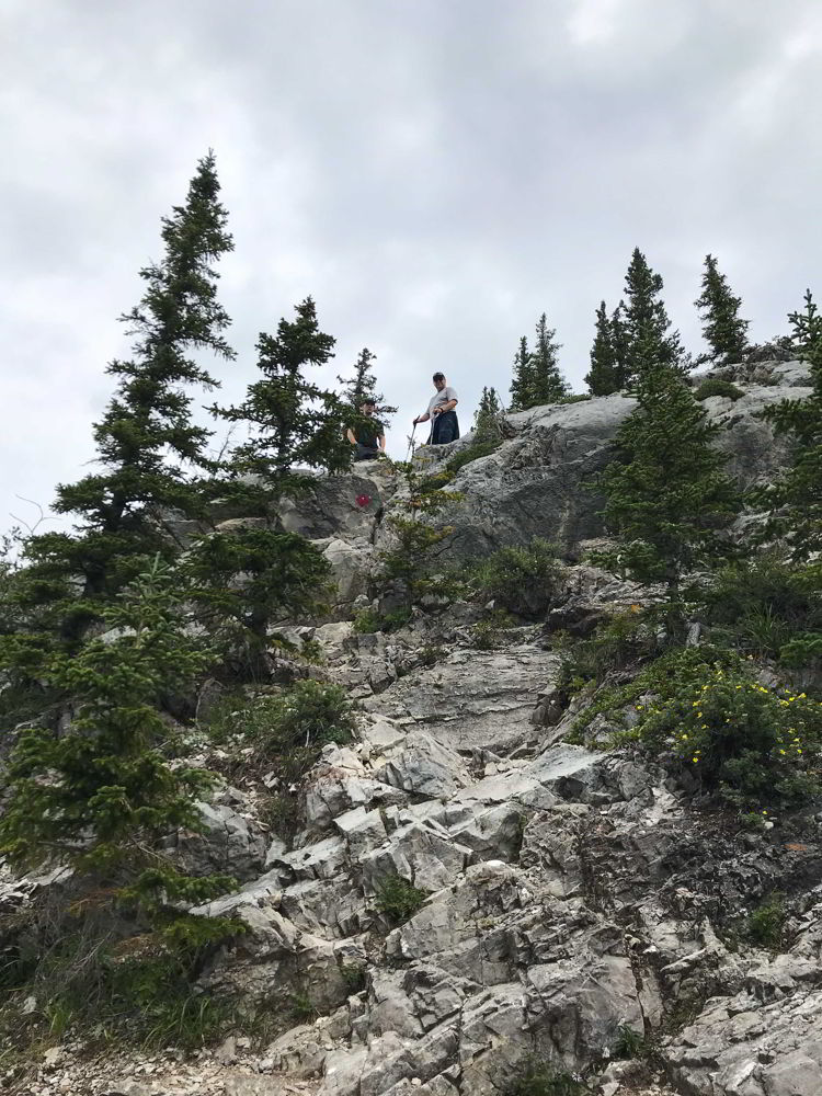 An image of a trail marker on the Heart Mountain trail near Canmore, Alberta.