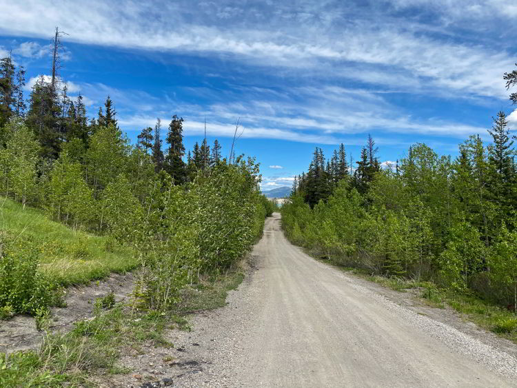 An image of the gravel road leading to a camping area beside Abraham Lake in Alberta, Canada.