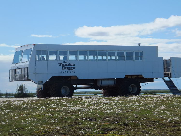 An image of a tundra buggy used for polar bear watching in Churchill, Manitoba, Canada.