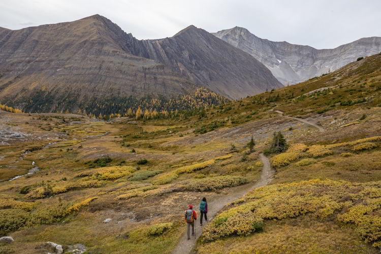 An image of the Ptarmigan Cirque hike. Photo credit: Travel Alberta/Paul Zizka.