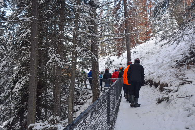 An image of a group of people walking on the trail in Maligne Canyon in winter - Jasper icewalk.