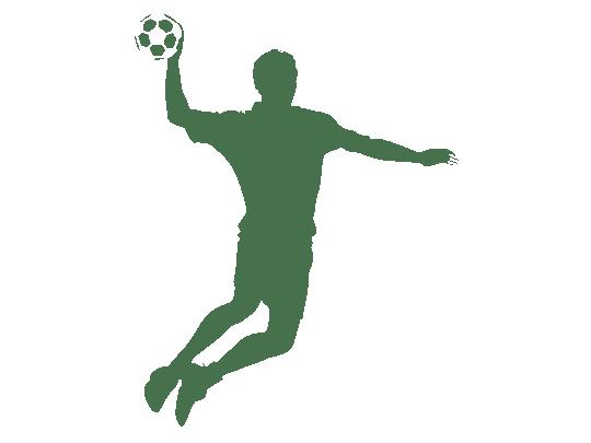 wandtattoo handballvon wandtattoo net