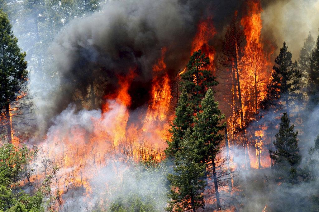Colorado Wildfires657456456456456
