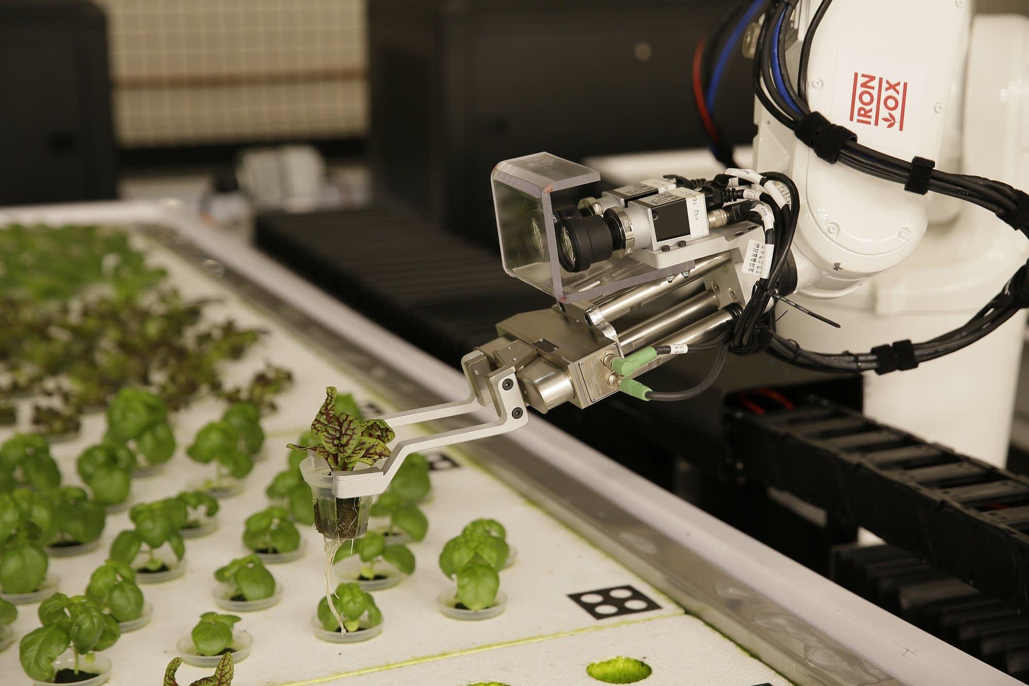 f1b401-20181003-robot-farmers02_1538577486547.jpg
