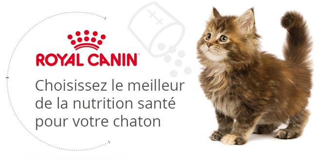 Royal Canin Kit Chaton