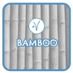 BT_aboutus_bamboo_1_web