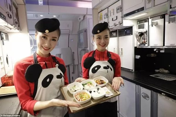 Dari Pakaian Pramugari Hinggalah Ke Menu Hidangan, Pesawat China Sichuan Airlines Dipenuhi Panda Comel!