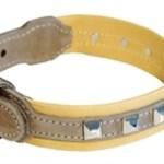 honden halsband montana bruin