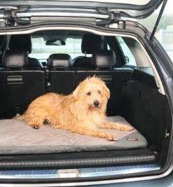 KONG Fold-up Opvouwbare Hondenmatras