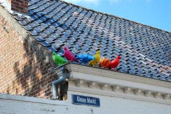 Overal in het dorp: de vrolijke duiven van Patrick Murphy