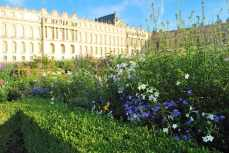 Versailles_tuin044