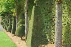 Versailles_tuinen030