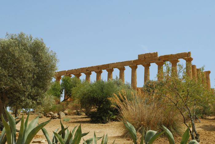 Sicilie--Agrigento120