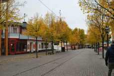 Djurgården