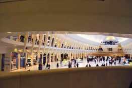 NY oculus