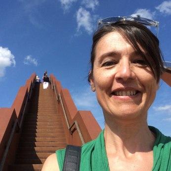 architectuur in de velden: de vlooybergtoren
