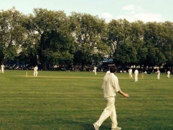 Cricketwedstrijd (foto D. Moens)