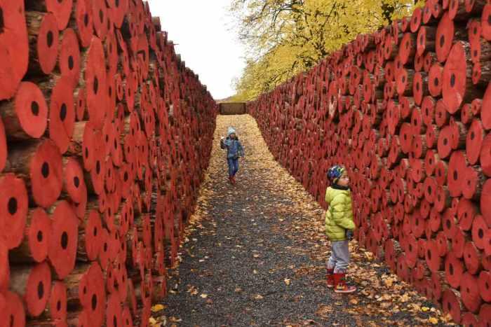 Tervuren Remembrance Day