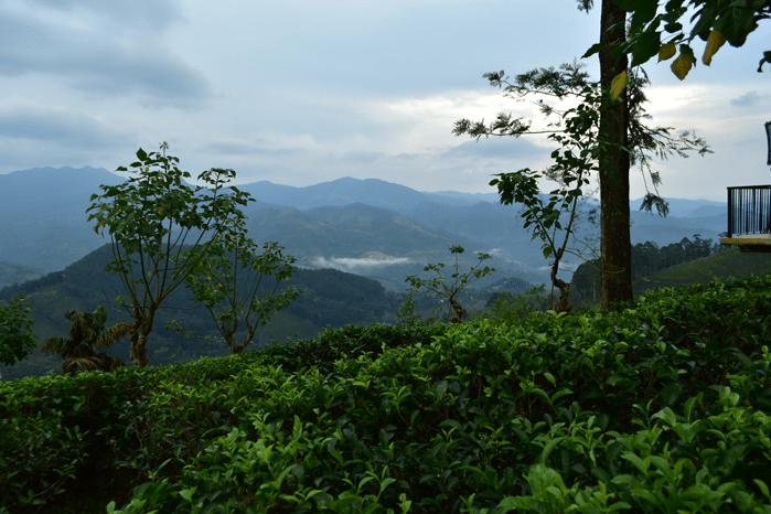 Sri Lanka_Knuckles Mountain Range
