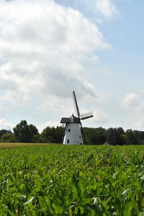 windmolens vlaamse ardennen