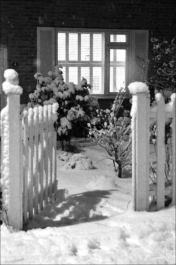 "© Geoff Wikinson who writes on his Wanstead Daily Photo blog: ""Thick snow, freezing cold, a long day but the light shining through the window and the open garden gate was a welcoming sight."""