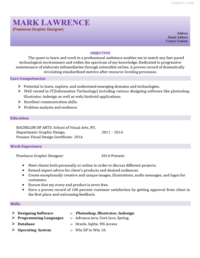 Freelance Graphic Resume format