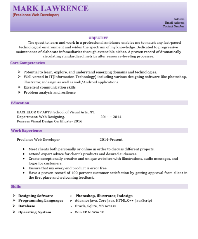 freelance web developer resume