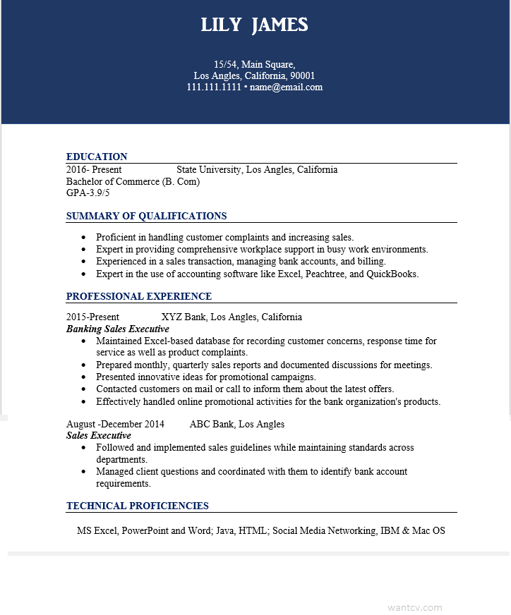 Resume for sales executive in banking