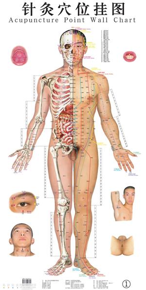 Waar worden de bruggen gebouwd tussen de eeuwenoude medische kennis, zoals hier bij acupunctuur, en de nieuwe medische 'wetenschap'. Is het aan de 'patient' om te kiezen uit 'alternatief' en 'regulier'...?