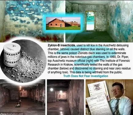 Afbeelding 5 Holocaust myth 3