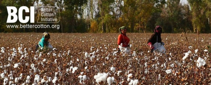 BCI better cotton initiative katoen