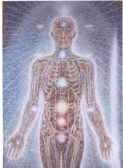 Het menselijke energielichaam (Alex Grey)