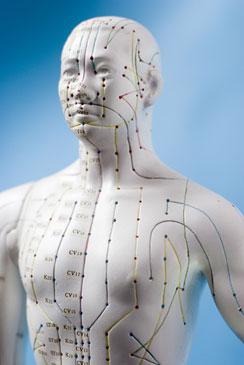 Acupunctuur gaat uit van de energetische mens, in plaats van alleen de fysieke mens, waar zich de kwaal manifesteert. Voor acupunctuur ligt de oorzaak bij energetische blokkades..!