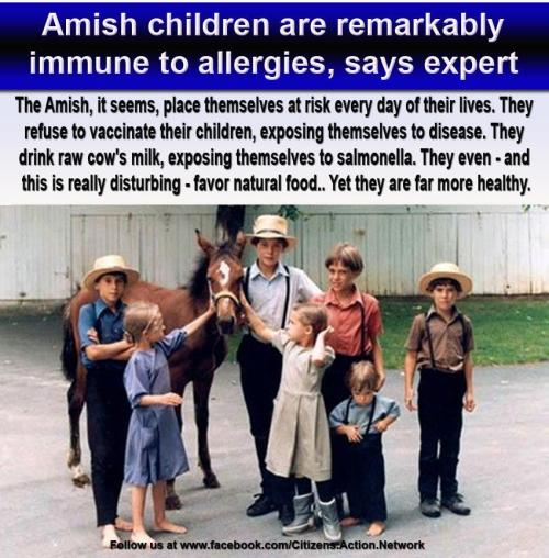 amish children immuniteit