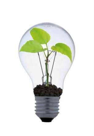 Waarom zouden onze technische vindingen ondergeschikt moeten zijn aan de natuurlijke principes van bio-energie..?
