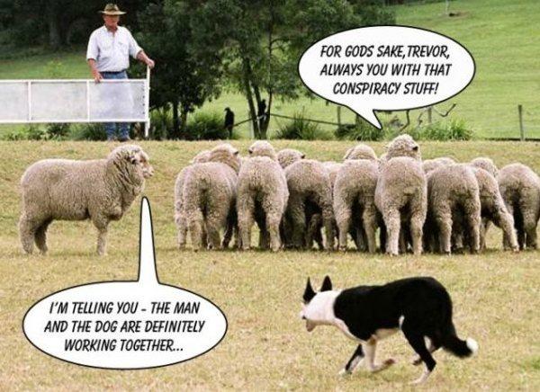 conspiracy humor