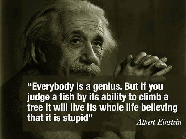 einstein genius stupid