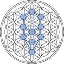 De kabala komt voort uit de basisvorm van de Levensbloem.